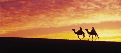 Excursions - Ancient Egypt 14 nights