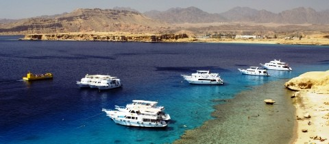 sharmelsheikh caro.jpg - Destinations & Resorts