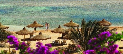 Sharm-sea & beach_Resized_479x210.jpg - Red Sea